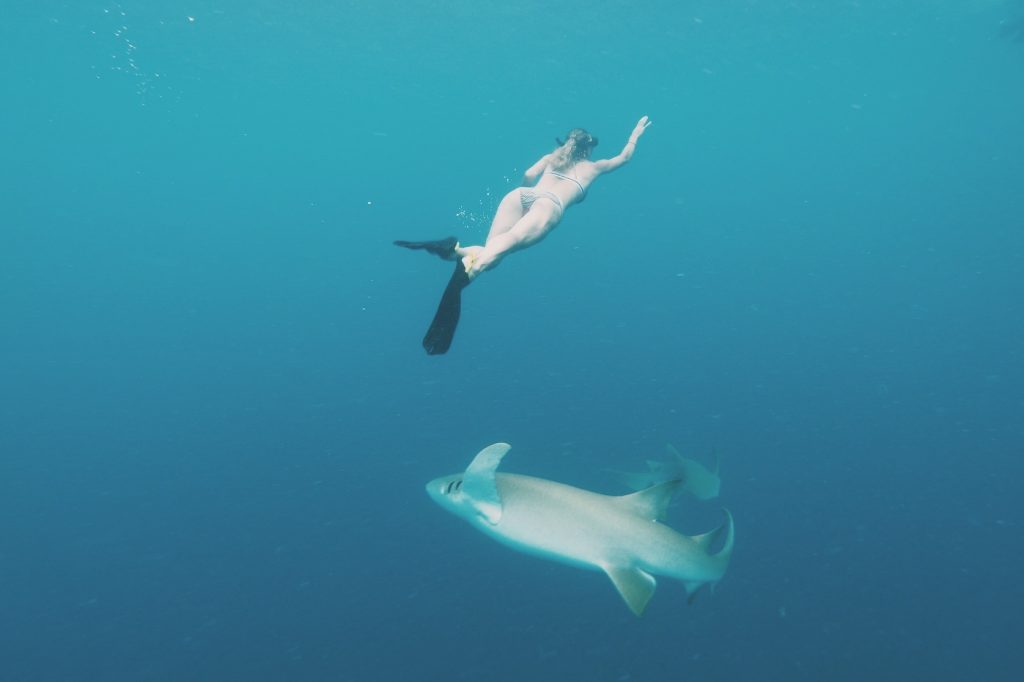 Maafushi snorkling iCom Tours