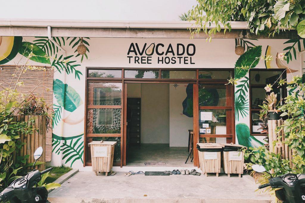 Avocado Tree Hosel Siargao Solon Travel