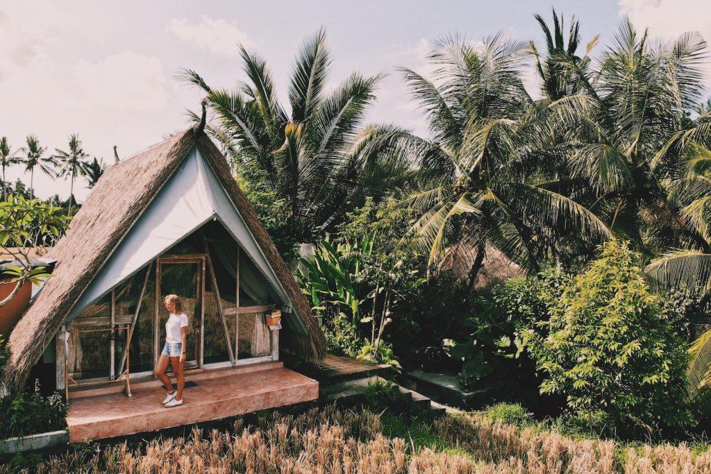 Padi Shack Ubud Bali Solon Travel