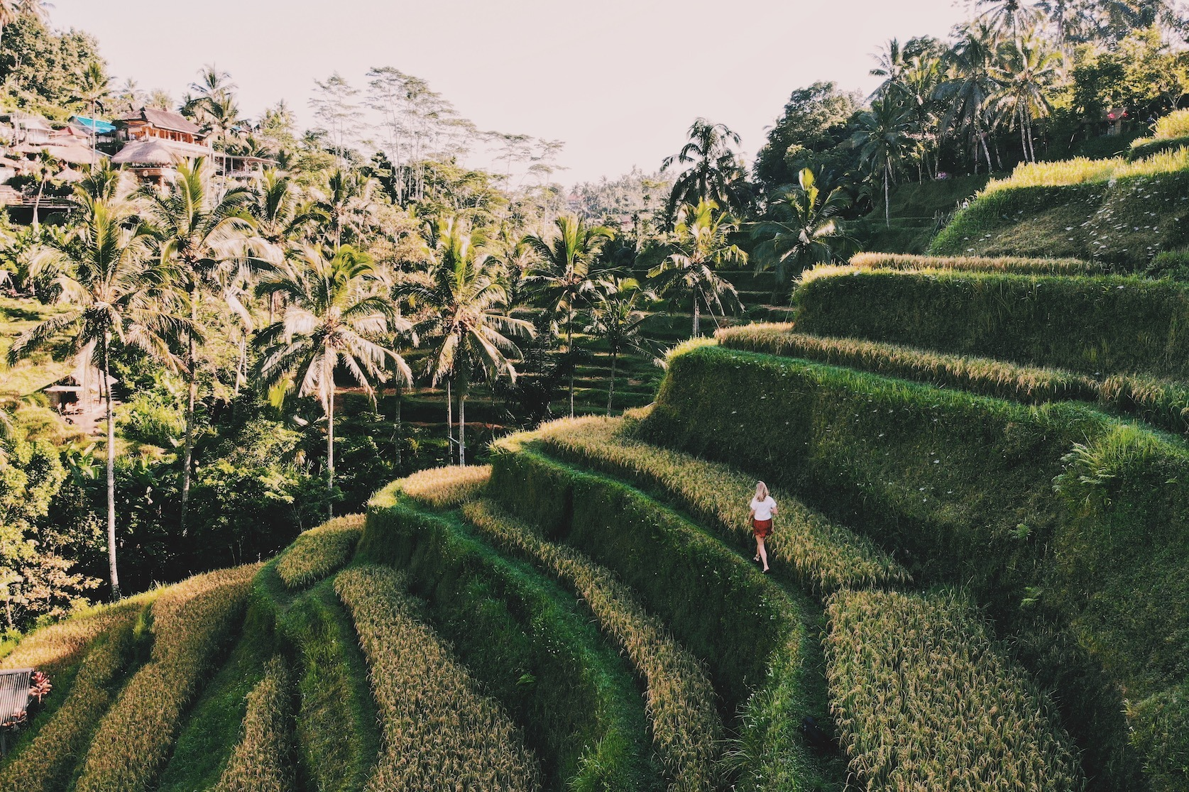 Tegalalang rijstterrassen Ubud Bali Solon Travel