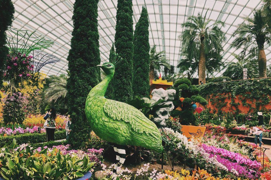 Flower Dome Singapore Solon Travel