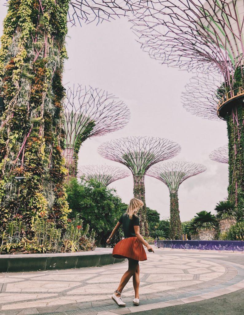 Supergrove Singapore Solon Travel