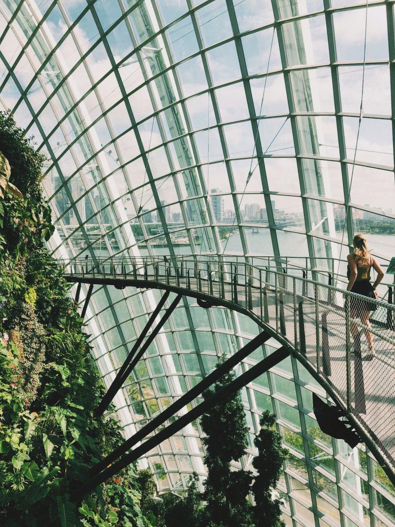 Cloud forest Singapore Solon Travel