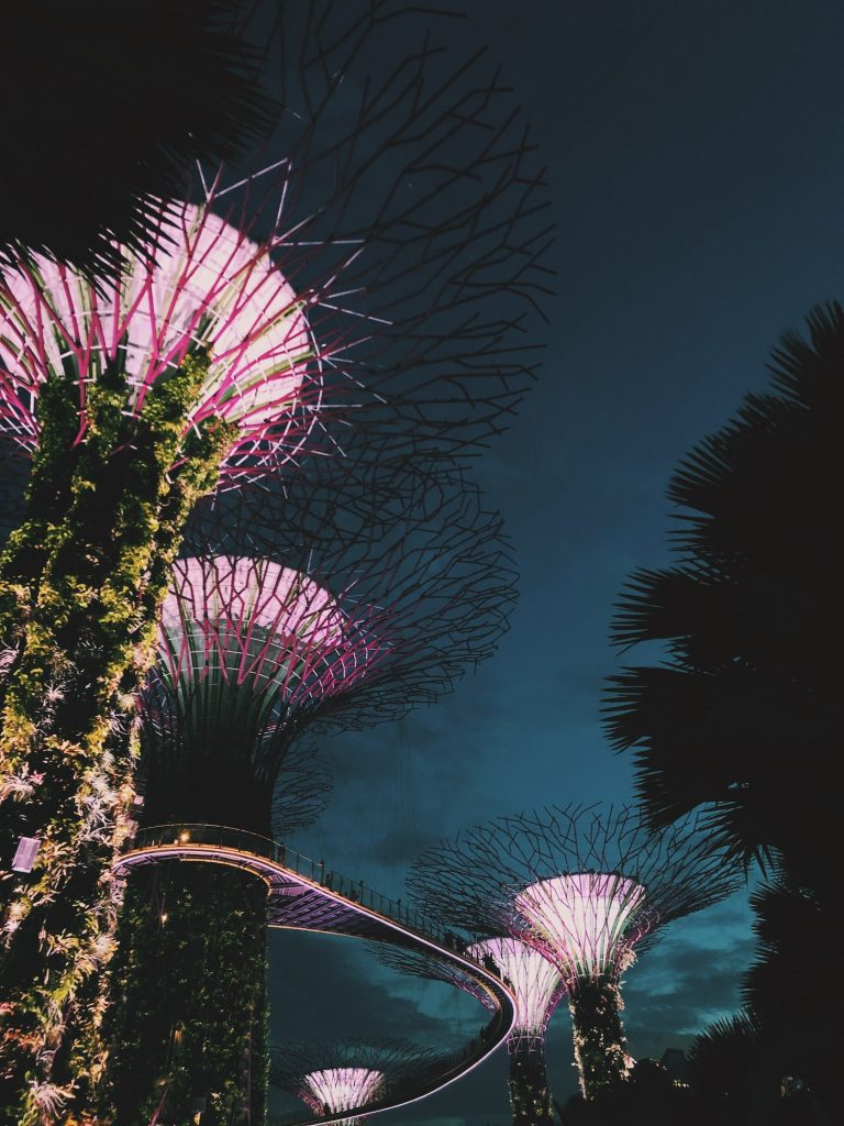Gardens by the Bay Singapore Solon Travel
