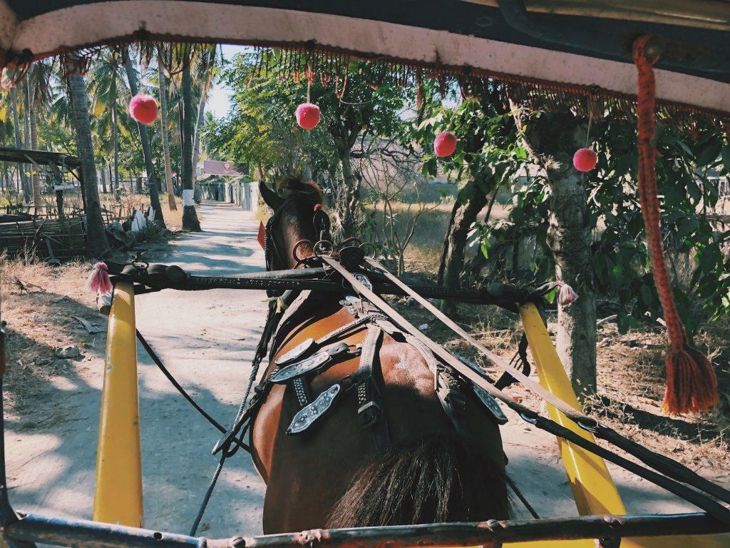 vervoer te paard Gili Trawangan reisroute indonesie Solon Travel