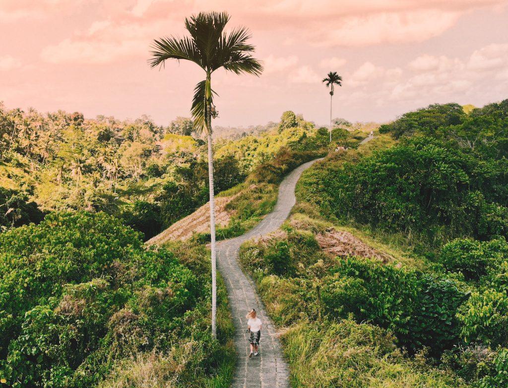 Campuhan ridge walk Ubud Solon Travel