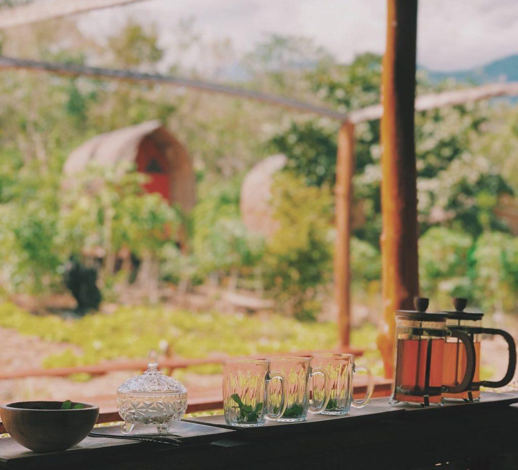 tea flores komodo eilanden Solon Travel