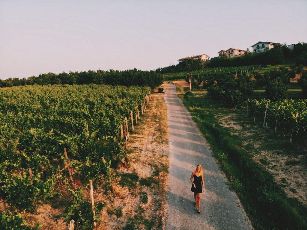wine wijnregio Italië Solon Travel vakantie