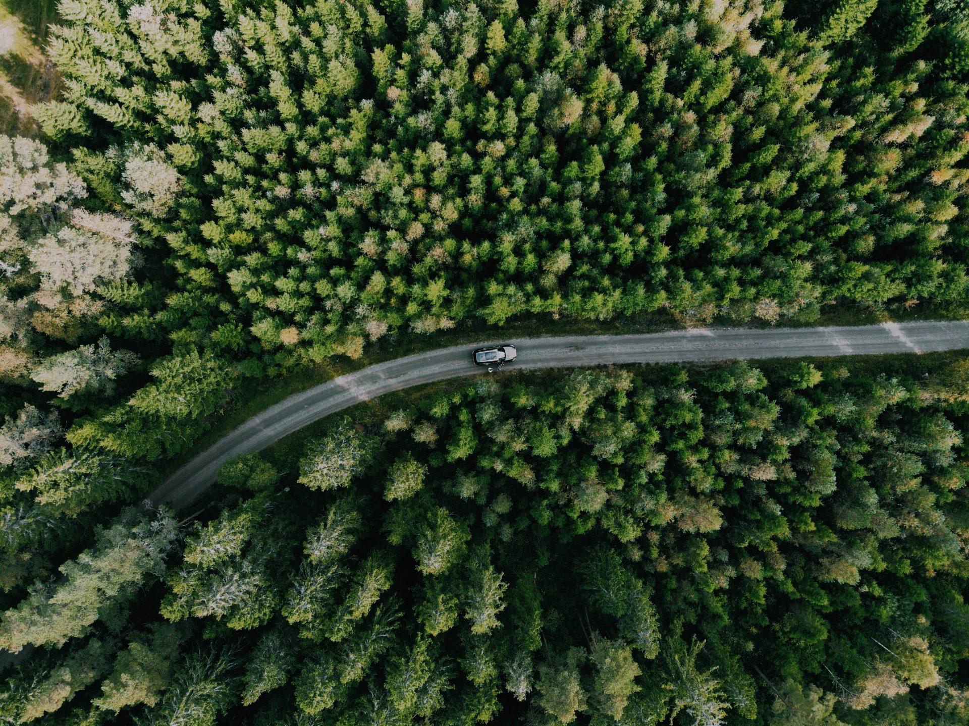 Zweden Smaland Solon Travel Sweden Roadtrip Solon Travel bossen volvo