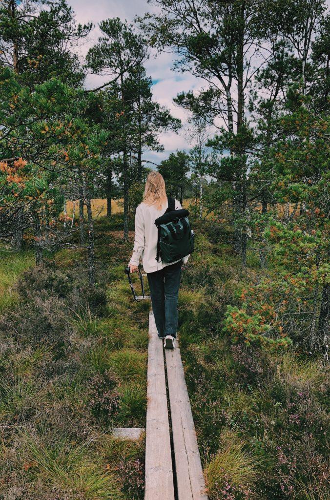 Store Mosse National Park Sweden Zweden Smaland Solon Travel